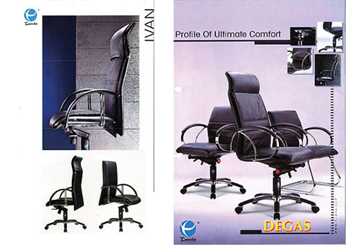 The Era of Director Chair